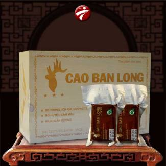 Cao ban long Sibiri loại hộp gỗ quà biếu NH003