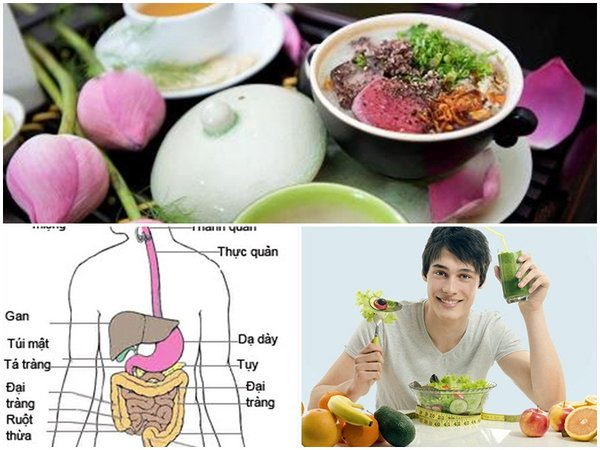 Món ăn từ nhung hươu thúc đẩy hệ tiêu hóa hiệu quả