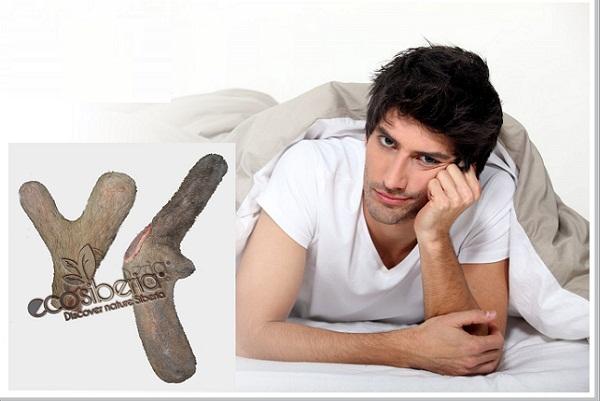 Nhung hươu có tác dụng gì với nam giới