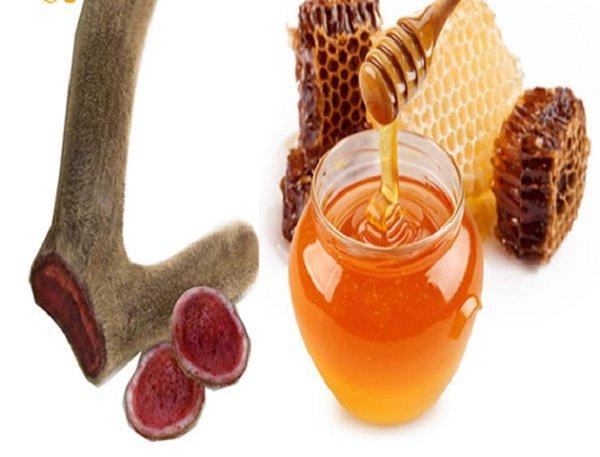 Nhung hươu mật ong bồi bổ sức khỏe cho người già