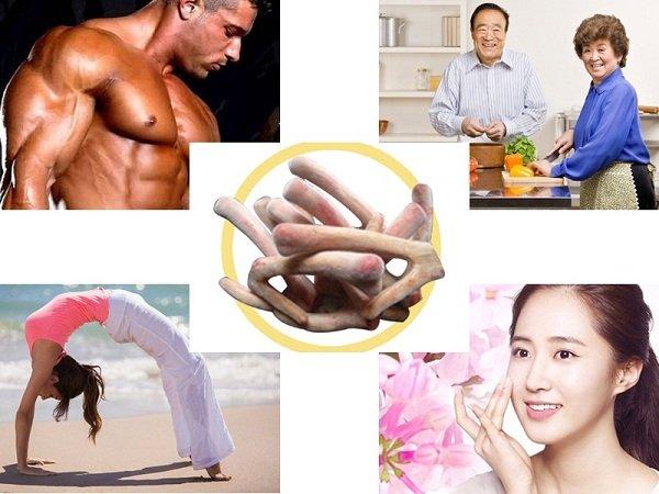 Sử dụng nhung hươu bổi bổ sức khỏe toàn diện